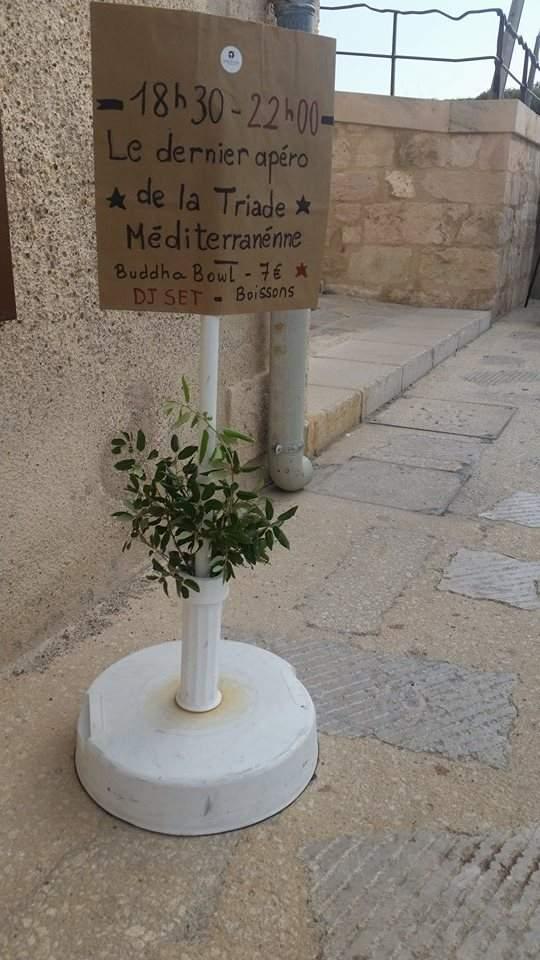 triade-méditerranéenne